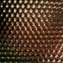 Closeup of a 2D image measured by a lenslet-based camera, after demosaicing. Decoding is the process of converting this 2D image into a 4D light field.